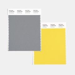 PANTONE 17-5104 Ultimate Gray + PANTONE 13-0647 Illuminating named 2021 Colours of the Year