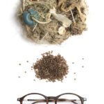 Eco-friendly eyewear