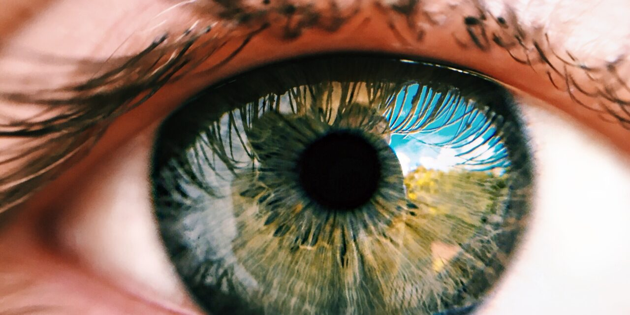 Dry eye disease negatively affects physical and mental health as well as vision